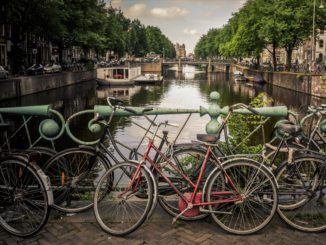 Amsterdam discover the best places